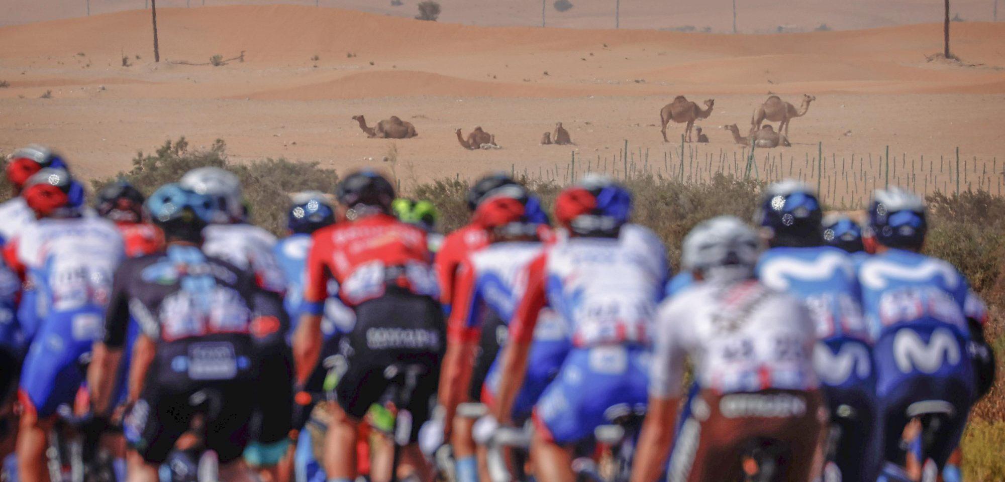 Volg hier de vierde etappe van de UAE Tour 2021 - Wielerflits